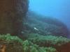 atoll50-08
